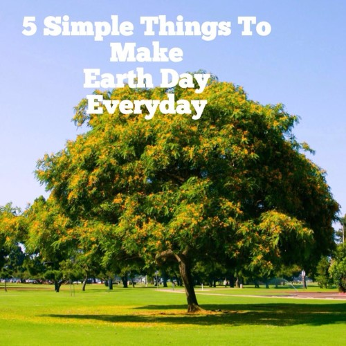 Donate Furniture Orange County Here are 5 simple things you can do to make everyday Earth Day: